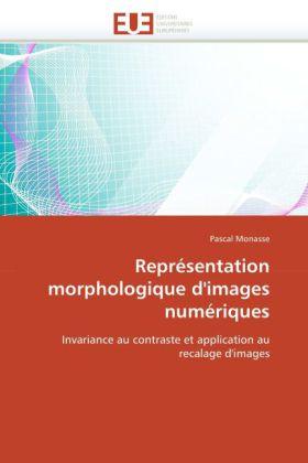 Représentation morphologique d'images numériques - Invariance au contraste et application au recalage d'images - Monasse, Pascal