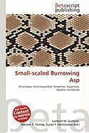 Small-Scaled Burrowing ASP