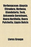 Verbenaceae: Aloysia Citrodora, Verbena, Glandularia, Teck, Avicennia Germinans, Oxera Neriifolia, Oxera Pulchella, Lippia Dulcis