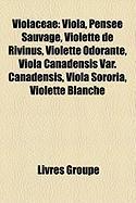 Violaceae: Viola, Pense Sauvage, Violette de Rivinus, Violette Odorante, Viola Canadensis Var. Canadensis, Viola Sororia, Violett