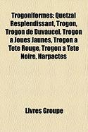 Trogoniformes: Quetzal Resplendissant, Trogon, Trogon de Duvaucel, Trogon Joues Jaunes, Trogon Tte Rouge, Trogon Tte Noire, Harpactes
