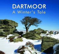 Dartmoor - a Winter's Tale