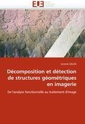Décomposition et détection de structures géométriques en imagerie: De l'analyse fonctionnelle au traitement d'image (Omn.Univ.Europ.)
