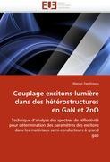 Couplage excitons-lumière dans des hétérostructures en GaN et ZnO